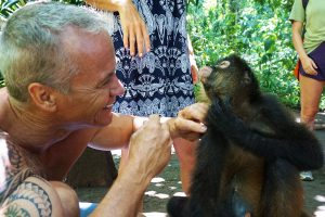 Monkey Costa Rica Vacations