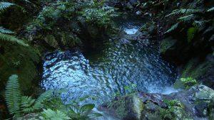 Falls Costa Rica Vacations