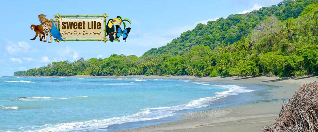 things to do in cabo matapalo costa rica